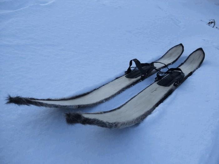 ski-diy